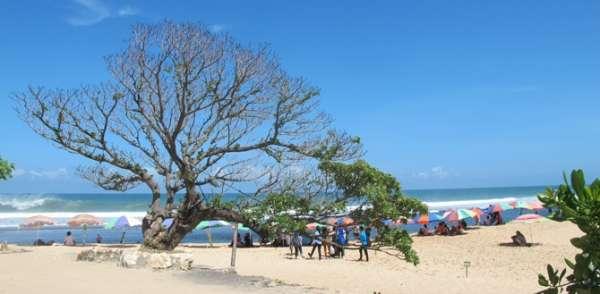 Pantai Pok Tunggal Yogya Gudegnet