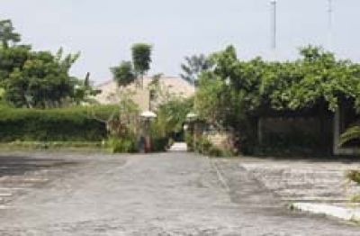 Bebek Tepi Sawah Restoran Cabang Ubud