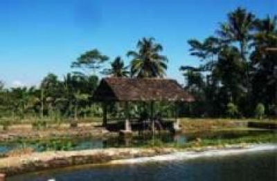 Desa Wisata Garongan Yogyakarta