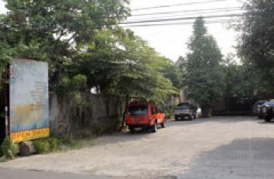 Sayur Desa