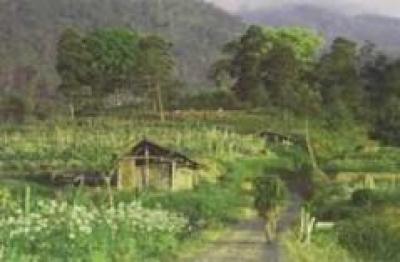 Desa Wisata Wonosadi Yogyakarta