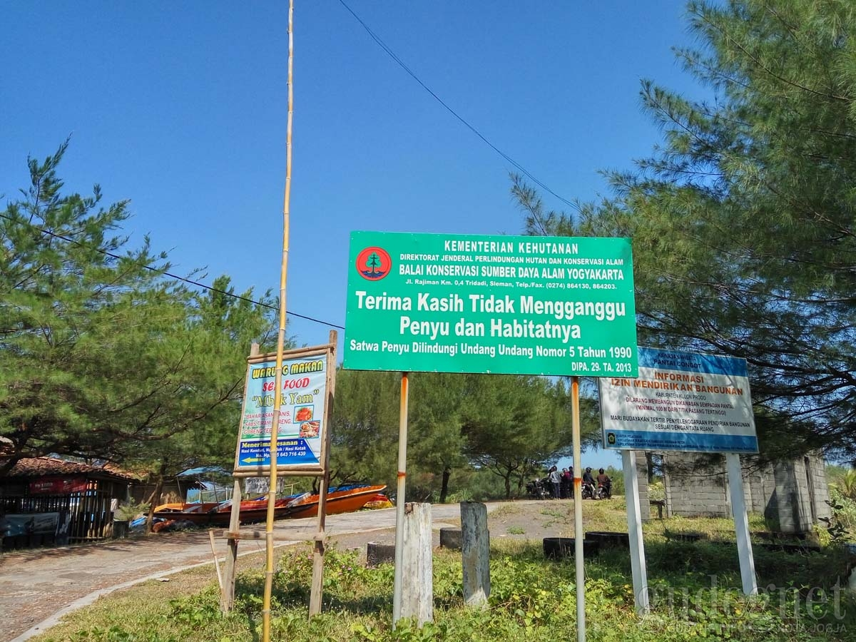 Pantai Congot Surga Nelayan Di Sisi Barat Yogyakarta Yogya Gudegnet