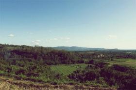 Pemandangan dari atas bukit di Candi Barong