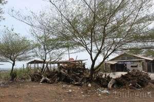 Rumah-rumah di pantai Pandansimo, Yogyakarta