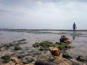 Wajah Pantai Sundak Pasca Diterjang Gelombang Tinggi