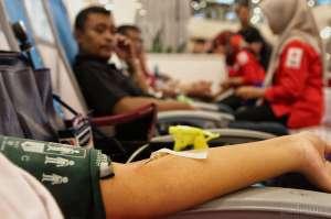 Donor Darah Hari Ini