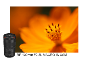 Canon Luncurkan Lensa Tele Makro RF 100 mm f/2.8L Macro IS USM